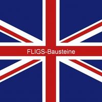 FLIGS (2008)