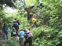 Waldpädagogik der Landesforsten