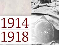 Der Erster Weltkrieg - industriell geführter Massenkrieg und Medienereignis