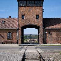 Wahlmodul 4: Erinnerung an die Opfer des Nationalsozialismus