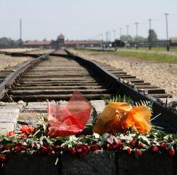 Thema im Fokus: 27. Januar - Gedenktag für die Opfer des Nationalsozialismus