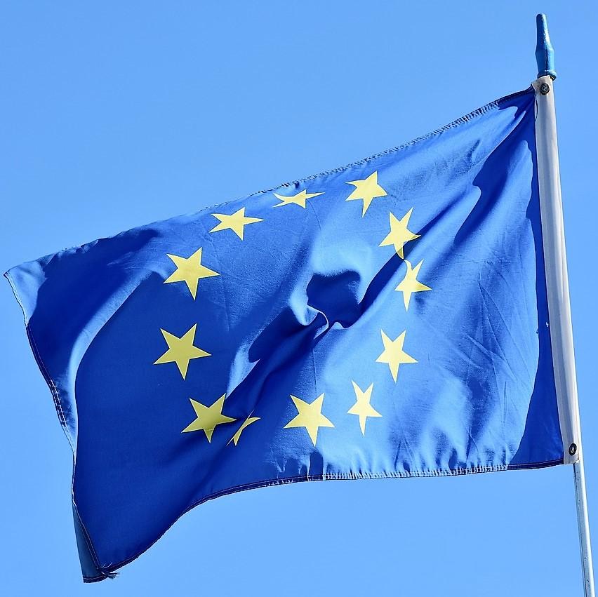 Wahlmodul 5: Die europäische Einigung - eine Erfolgsgeschichte?