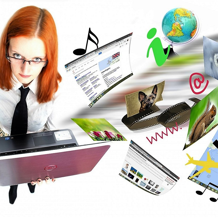 Geschichte im Internet: Fachwissen, Fachdidaktik, Zeitzeugen