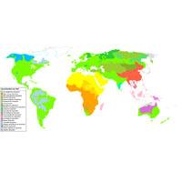 Sprachenfamilien der Welt